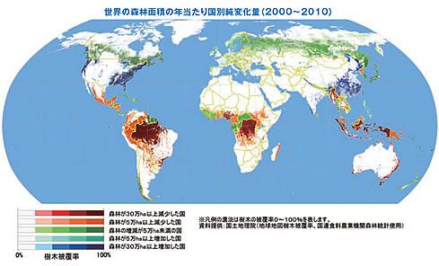 森林面積の減少